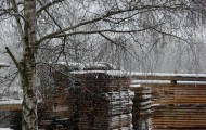 wetterbestaendiges Holz